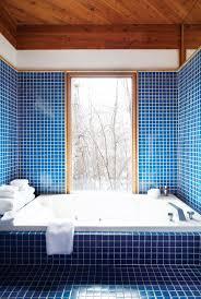 Cabin Bathroom Ideas 812 Best Bathroom Images On Pinterest