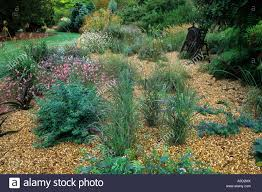 ornamental grasses combined with herbaceous planting in the gravel
