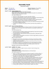 Resume Personal Profile Statement Examples Profile Resume Example How To Write A Professional Profile Resume