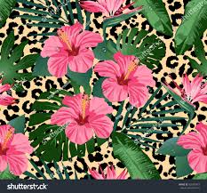 tropical flowers leaves on leopard background stock vector