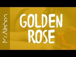format factory yukle boxca golden rose 2017 audio youtube