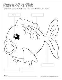label color parts fish