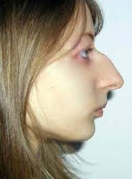 latest hairstyles for women with long nose or being cautious with certain hairstyles big noses people and