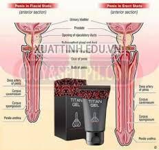 obat titan gel asli obat pembesar penis titan gel cream