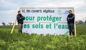 chambre d agriculture des cotes d armor parlons couverts végétaux journal paysan breton