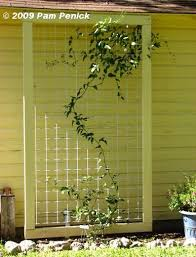 Trellis On Trellis Style To Use For Back Of Garage Painted Frame With Wide