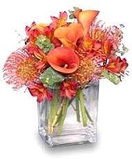 Flower Shops In Snellville Ga - about us linda u0027s house of flowers snellville ga