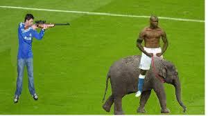 Mario Balotelli Meme - mario balotelli goal celebration mario balotelli s goal