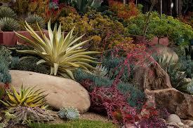 Rock Garden Succulents Stunning Succulent Rock Garden Succulents Pinterest Charming