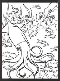 coral reef fish coloring pages ocean life pinterest coral