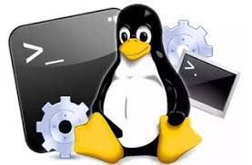 learn android linux command line shell learn android linux command line shell linux