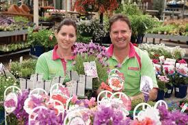 Nursery Plant Supplies by Garden Grove Adelaide Nursery Gardening And Landscape Supplies