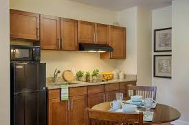 small kitchen cabinets ideas pictures kitchen ideas mini kitchen for sale tiny house kitchen small compact