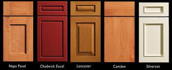 Cabinet Door Designs 14 Modern Cabinet Door Styles Carehouse Info