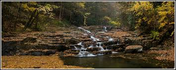 Maryland forest images Alex mody photography blog blog archive lost land falls jpg