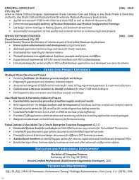 Management Consulting Resume Examples by Software Consultant Resume Example Oracle Systems Financial