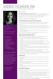 Personal Branding Resume Brand Strategist Resume Samples Visualcv Resume Samples Database