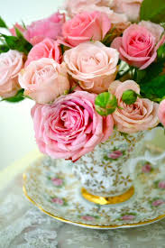 roses teacups teacup with roses bloom teacup flowers and