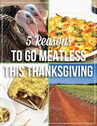 5 reasons to go meatless this thanksgiving pink troll kitchen