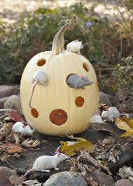 Small Pumpkins Decorating Ideas 16 Fun Pumpkin Carving Ideas Living The Country Life