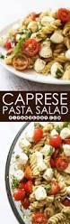 the 25 best pasta salad recipes cold ideas on pinterest cold