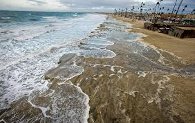 king tides what explains high water threatening global coasts