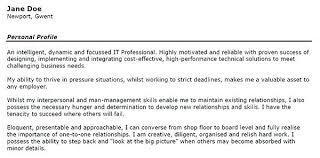 project manager cv resume summary examples finance resume summary