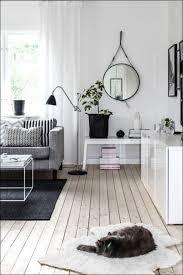living room marvelous scandinavian living room meaning