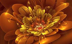 Flower Screen Backgrounds - 3d flower wallpapers android apps on google play