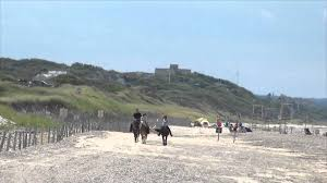 horseback riding on cape cod beaches youtube