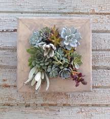 Garden Wall Planter by Vertical Garden 10x10 Living Wall Succulent