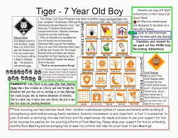 new tiger basics cub scouts pinterest tigers tiger scouts