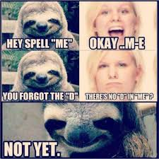 Sloth Jokes Meme - 90 best tuesday memes images on pinterest sloth humor creepy