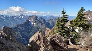 Mt Washington Trail Map by Mount Ellinor Trail Washington Alltrails Com