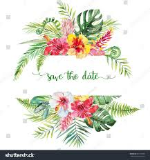 watercolor tropical floral illustration flower leaf stock
