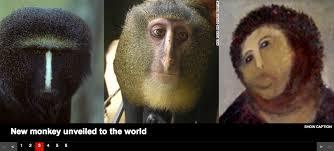 Monkey Jesus Meme - ecce monkey potato jesus know your meme