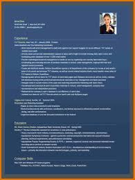 resume templates online free select template a sample template of
