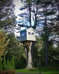 264 best tree houses images on the tree treehouses