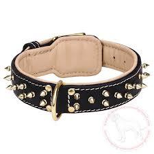 Comfortable Dog Collar Nappa Padded Dog Collar For Cane Corso Mastiff Get Spiked Walking