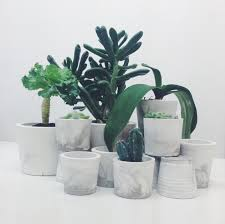 small black marbled cement pots planters for cactus succulents