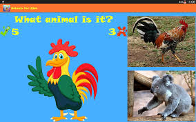 animals for kids android apps on google play
