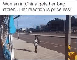 Funny Meme Gifs - stop laughing gif find share on giphy