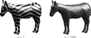 pattern formation zebra numerical simulation of the zebra pattern formation on a three