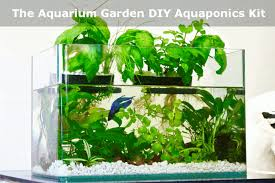 Kitchen Herb Garden Kit Grow Your Own Food Right In Your Kitchen With This Diy Aquaponics