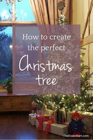 the perfect christmas tree with john lewis the essex barn