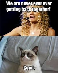 Meme Grumpy Cat - taylor swift and grumpy cat funny lyrics picture grumpy cat meme