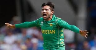 mohammad hafeez biography mohammad hafeez biography career family wife net worth more