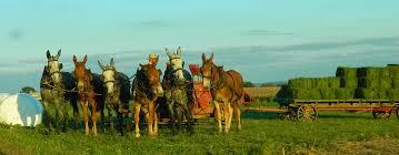dancing u0027cross the country lancaster pa pennsylvania dutch country