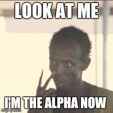 Alpha Meme - look at me meme imgflip