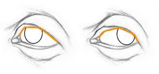 how to draw eyes stan prokopenko u0027s blog
